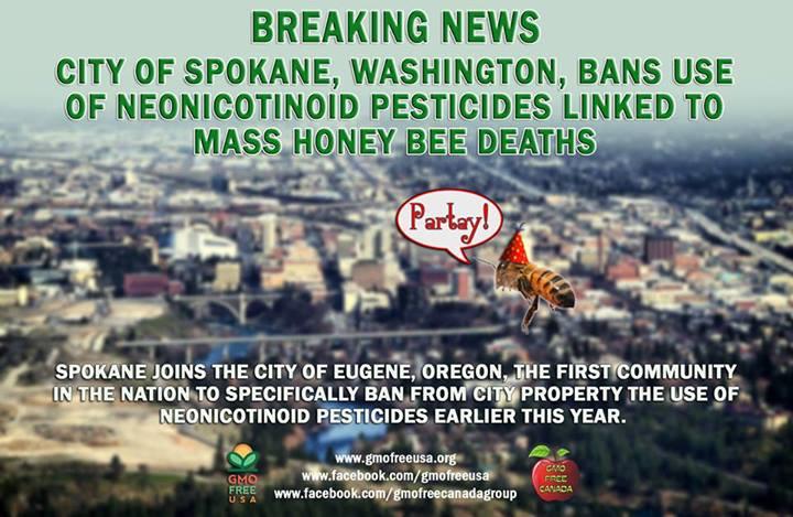 Bienensterben – In den USA wächst der Widerstand gegen Neonikotinoide