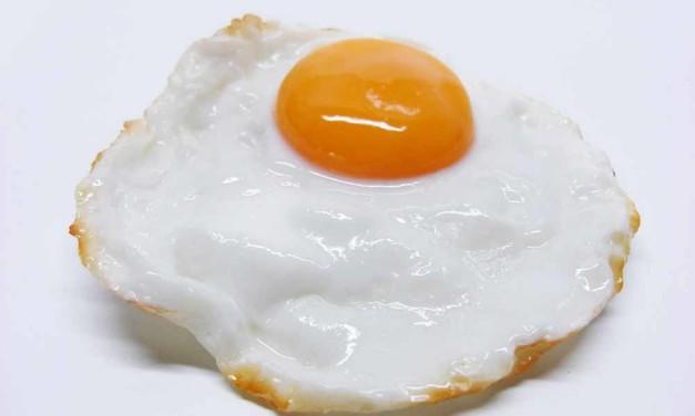 Hohe Cholesterinwerte verlängern das Leben