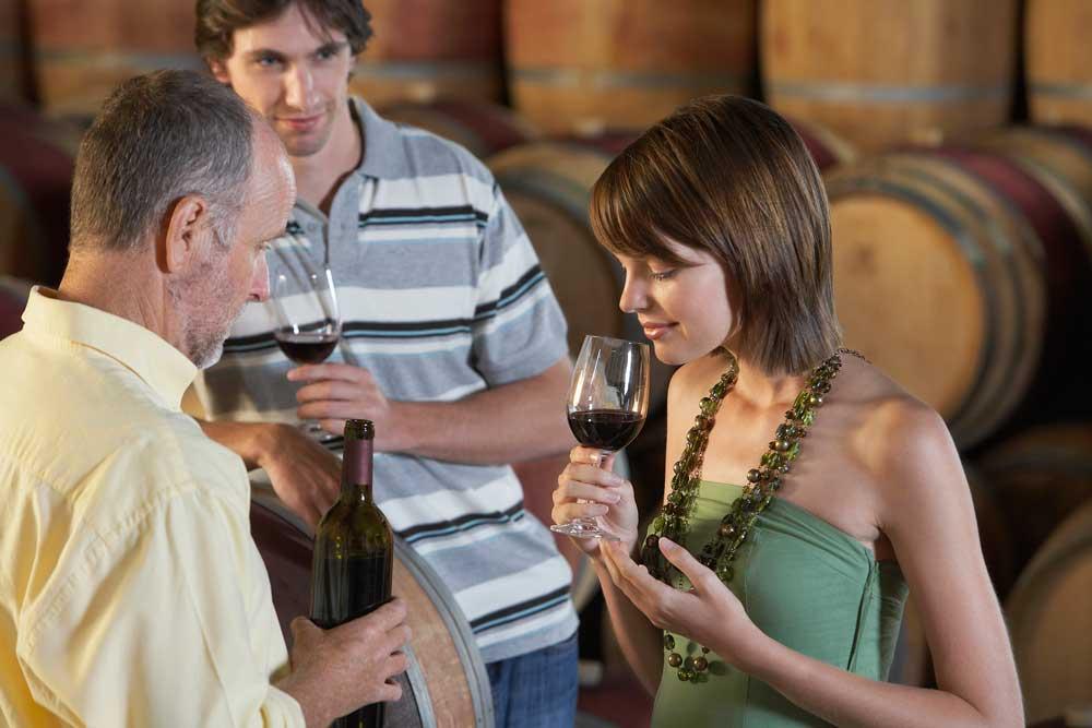 Weinstockleasing im biologischen Anbau - Der richtige Weg für Weingüter